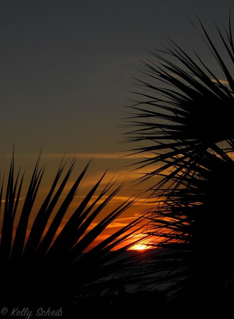 sunsetsil